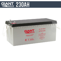 230AH 12V AGM Deep Cycle Battery