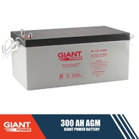 300AH 12V AGM Deep Cycle Battery