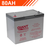 80AH 12V AGM Deep Cycle Battery
