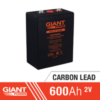 600AH 2V Carbon Lead Battery